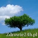 Zdrowie24h.pl
